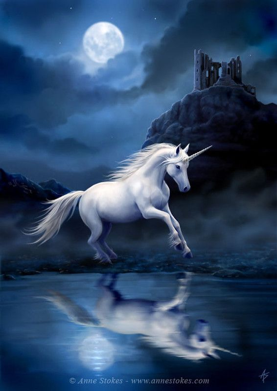 Moonlight Unicorn
