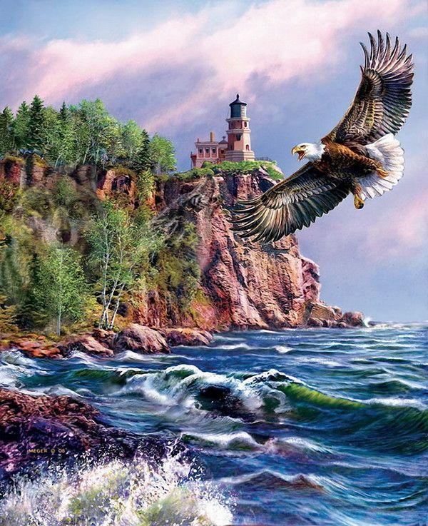 Você pode voar como a águia