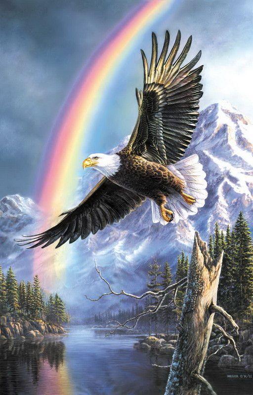 Les aigles dans la tempête !