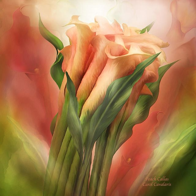 Image result for carol cavalaris art
